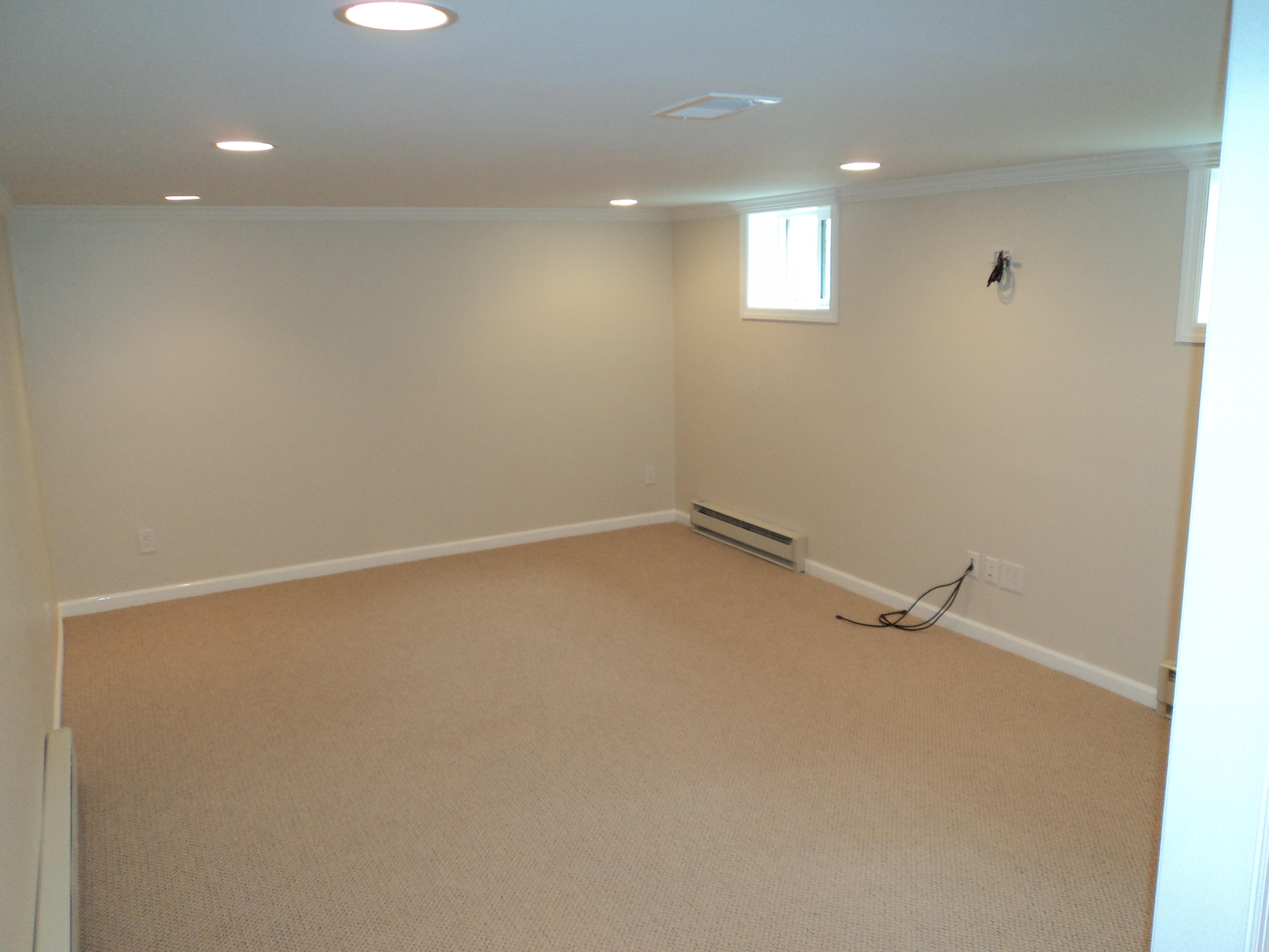 basement/DSC00170.JPG