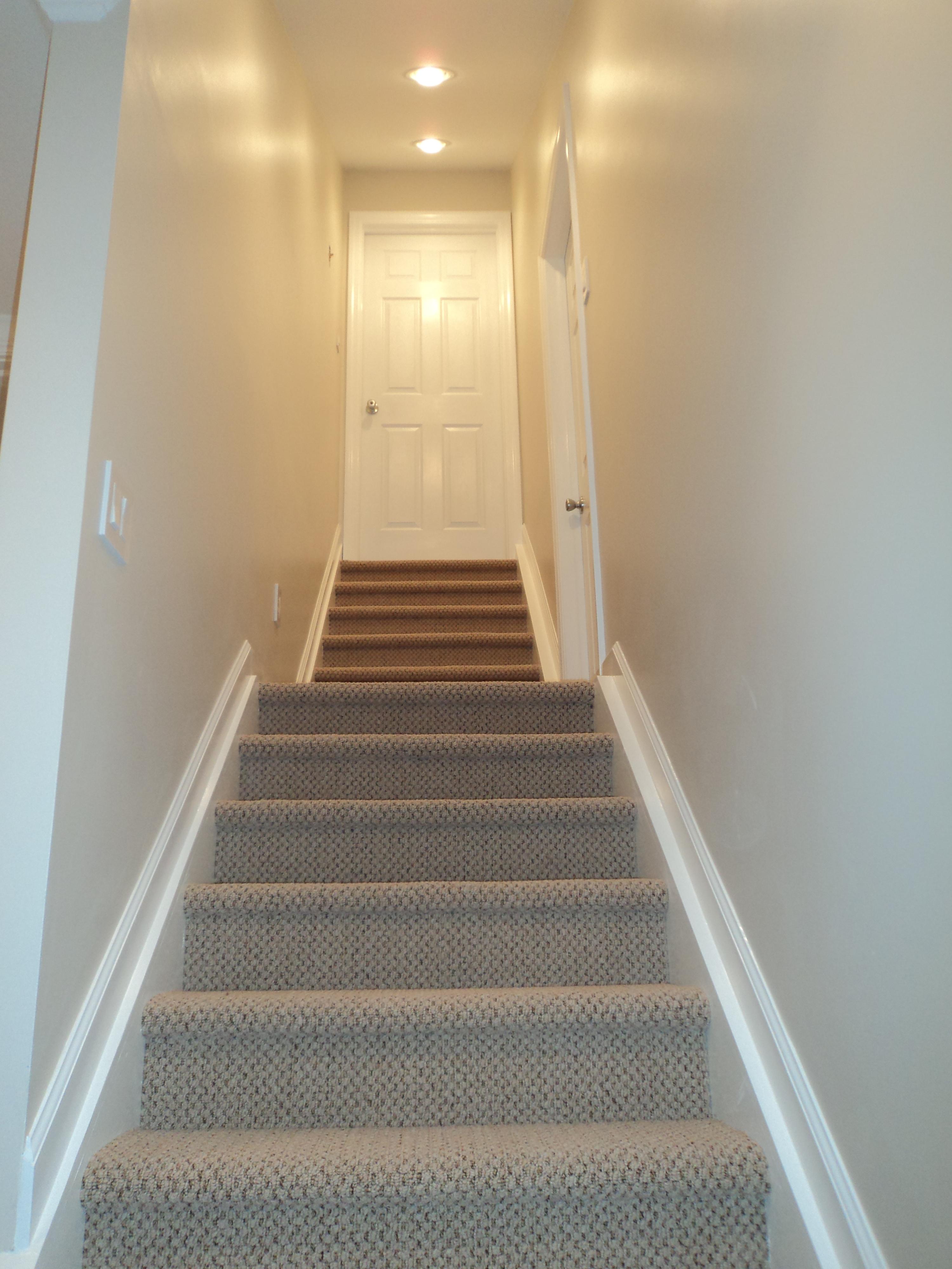 basement/DSC00171.JPG