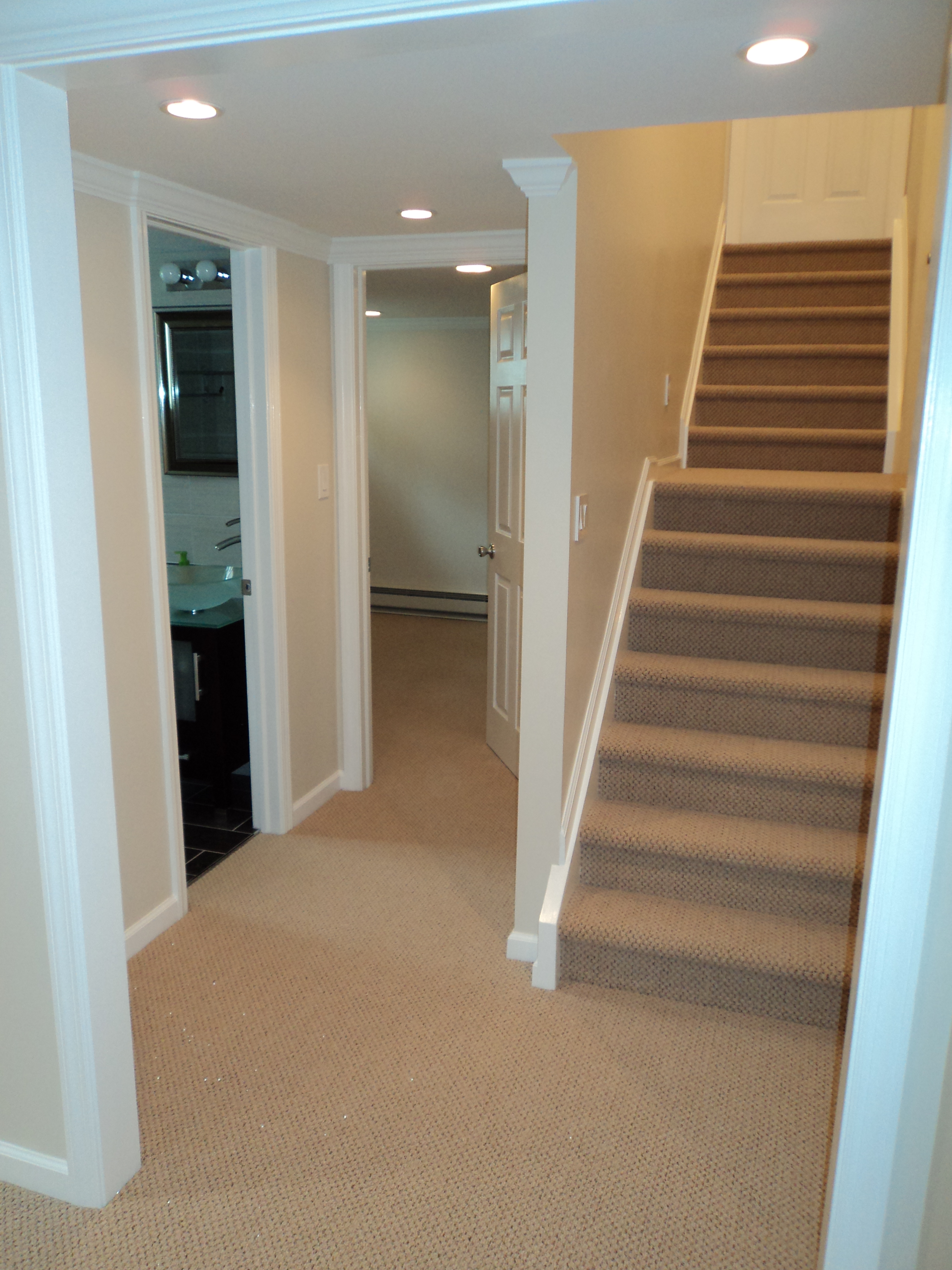 basement/DSC00173.JPG